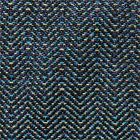 Blue Lily - Grade B