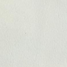 Snow White Vinyl